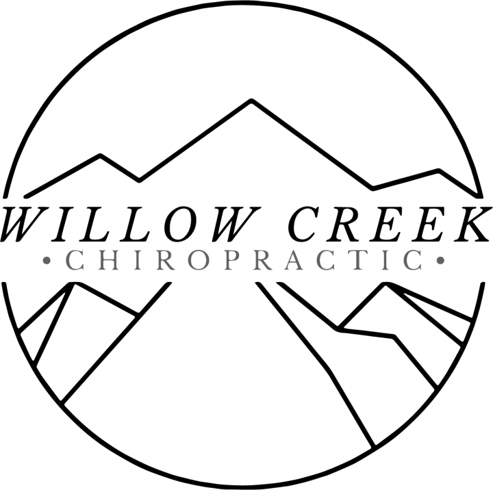 Willow Creek Chiropractic logo